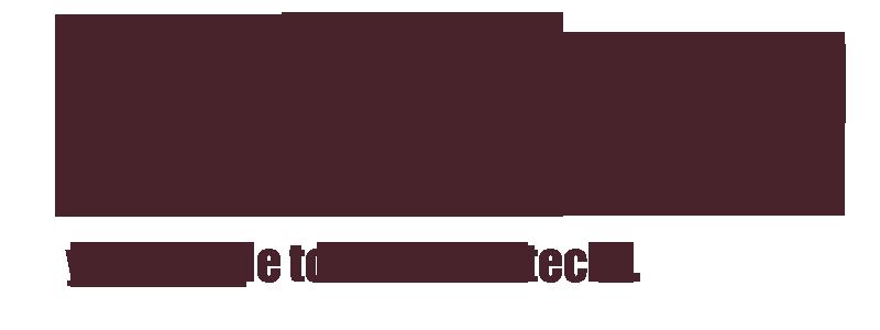 Aliza Sherman Social Media Mobile Tech Speaker